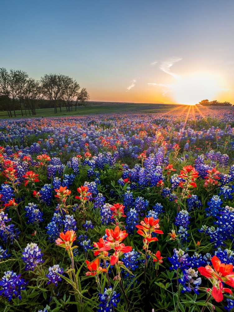 23 Most Beautiful Places To Visit In Texas Page 3 Of 23 The Crazy Tourist