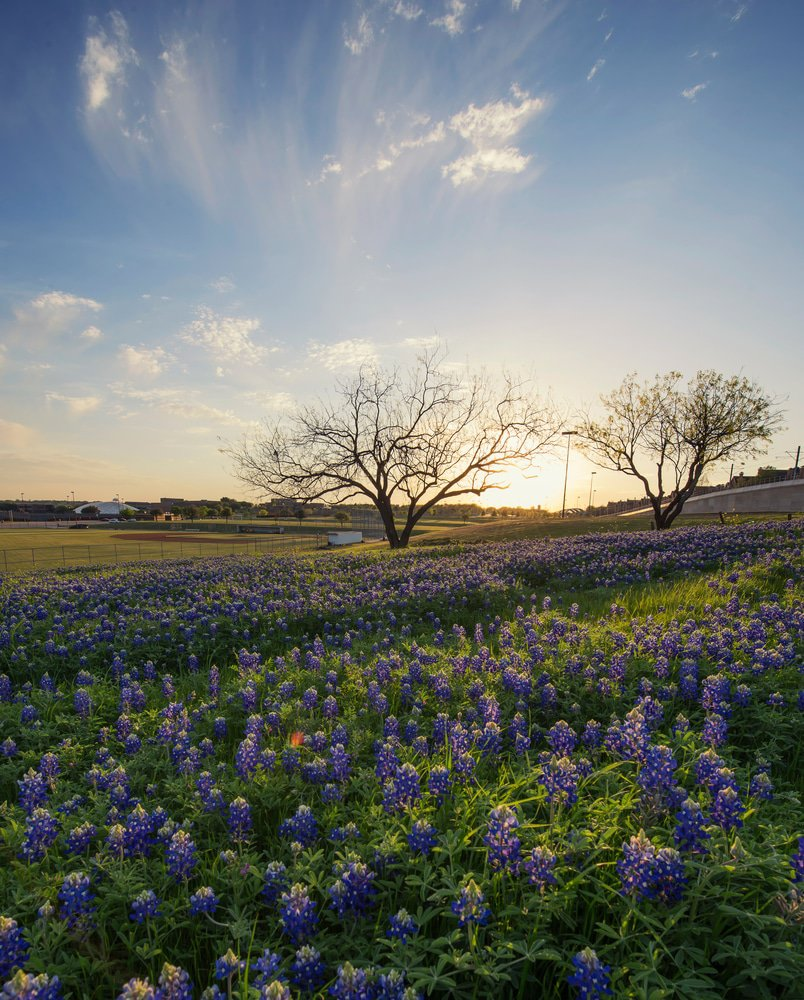 23 Most Beautiful Places To Visit In Texas Page 2 Of 23 The Crazy Tourist