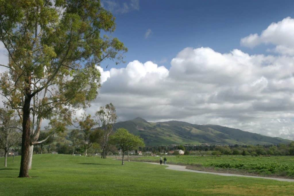 A view of Mission Peak from Fremont Central Park