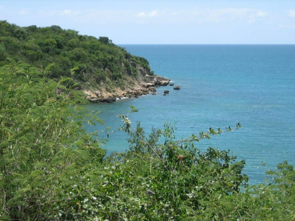 Guanica State Forest