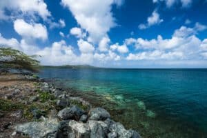 Mosquito Bay Vieques