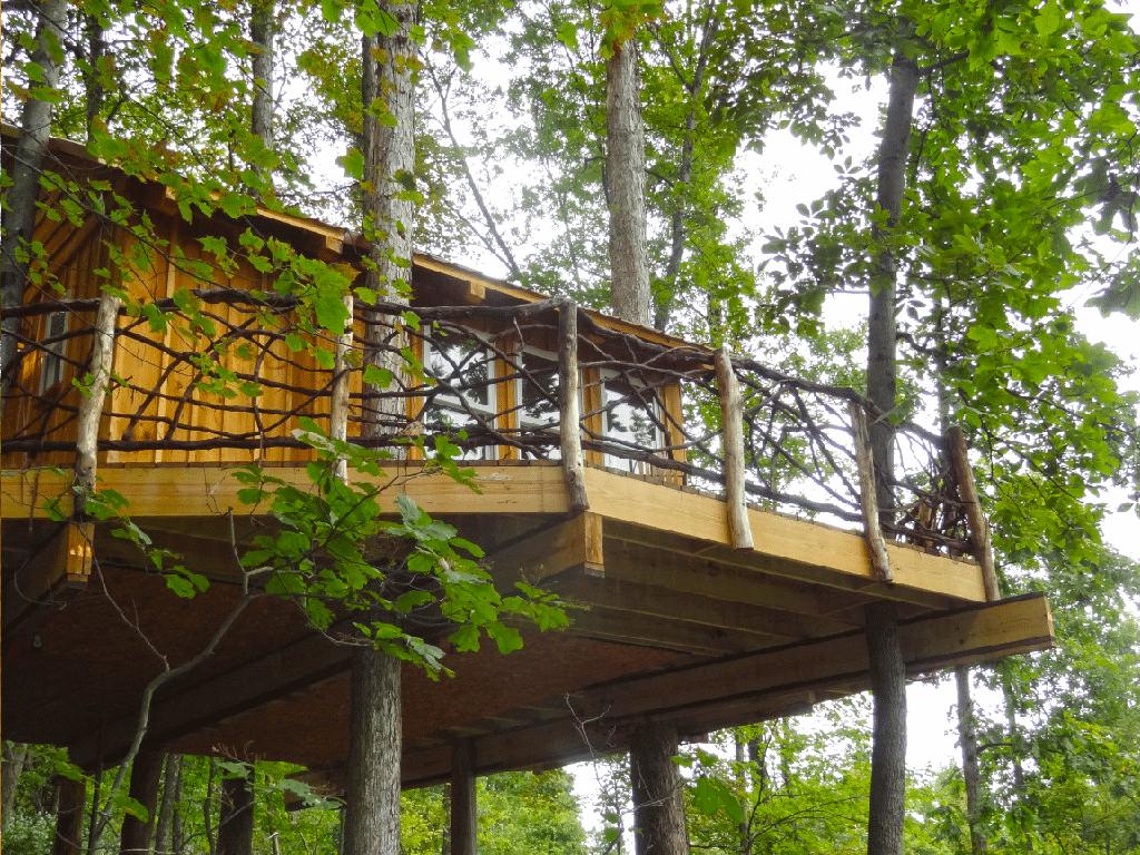 The Mohicans Treehouses
