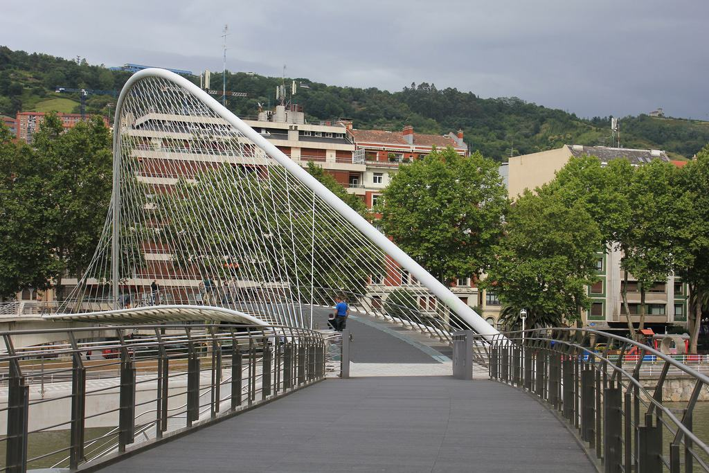 Zubizuri Bridge