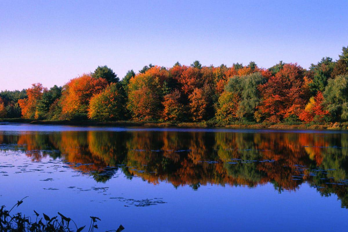 15 Best Lakes In Massachusetts The Crazy Tourist