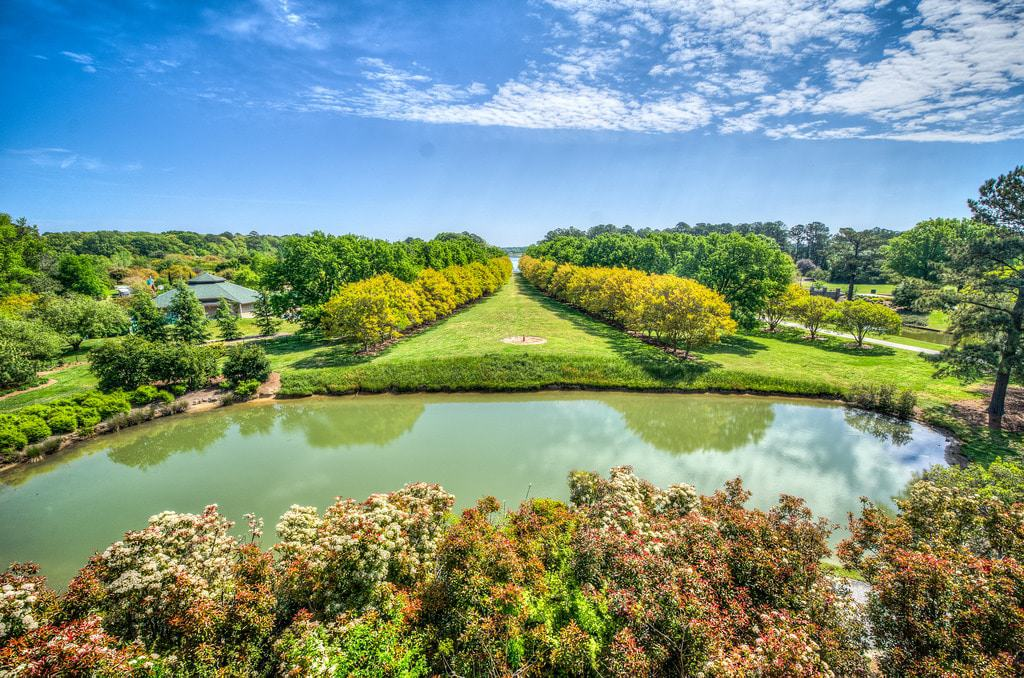 15 Best Things to Do in Norfolk (VA) - The Crazy Tourist