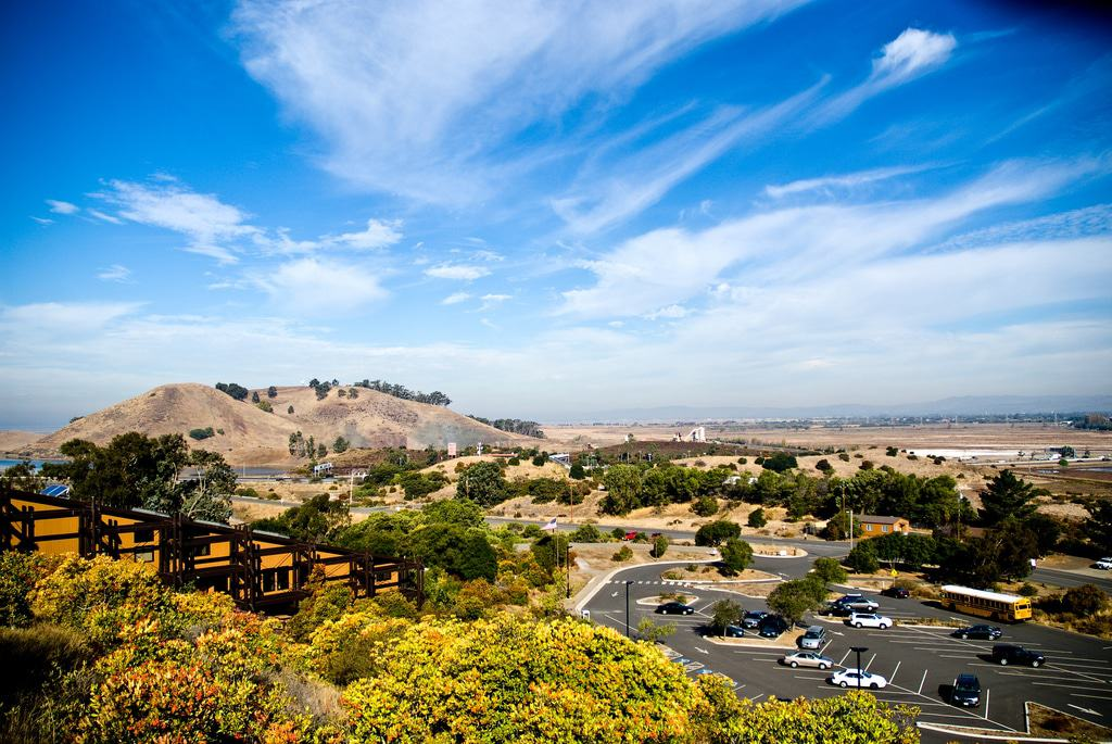 15 best things to do in fremont ca the crazy tourist for To do in california
