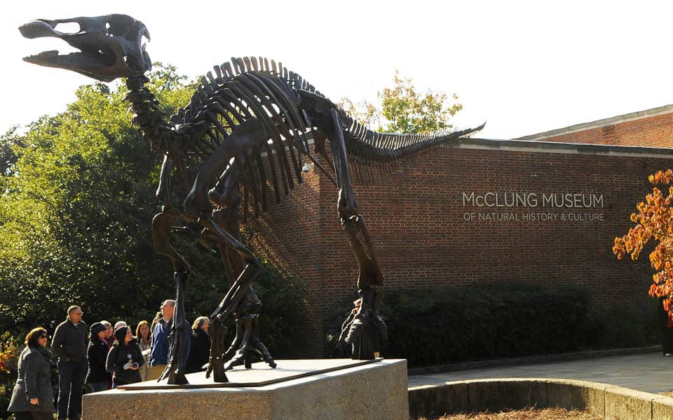 McClung Museum of Natural History and Culture