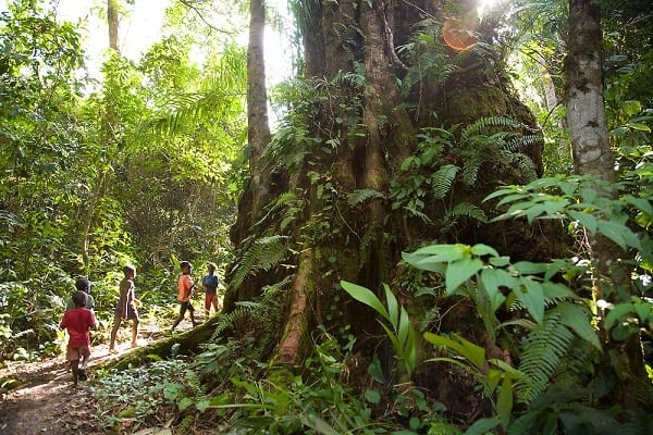 15 Best Places to Visit in Liberia - Page 2 of 15 - The Crazy Tourist