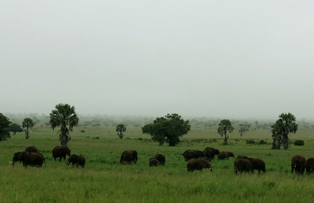 Kidepo Game Reserve