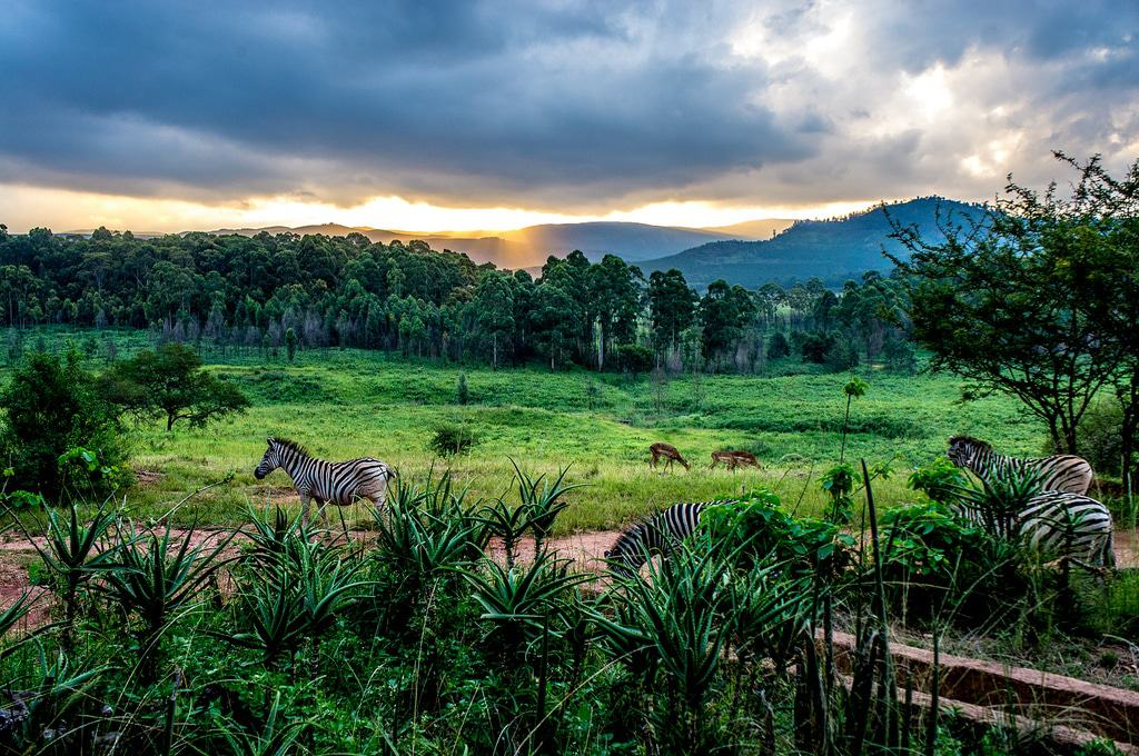 15 Best Places to Visit in Swaziland - The Crazy Tourist