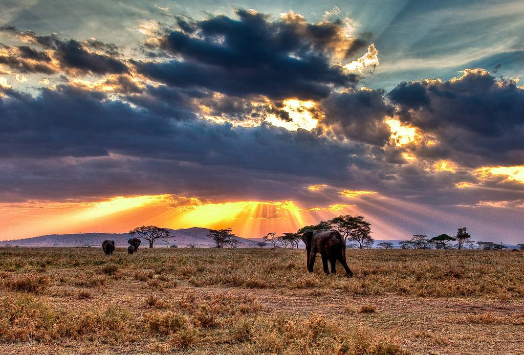 Tanzania vacations best places to visit ...  Tanzania Famous Places