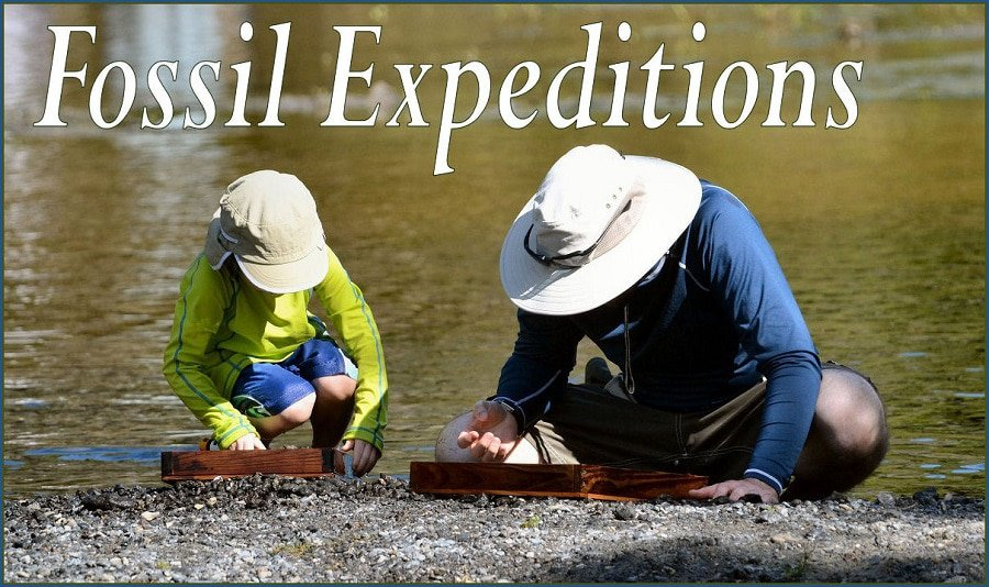 Fossil Expeditions