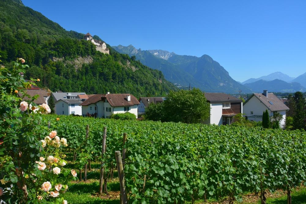 Prince Of Liechtenstein Winery