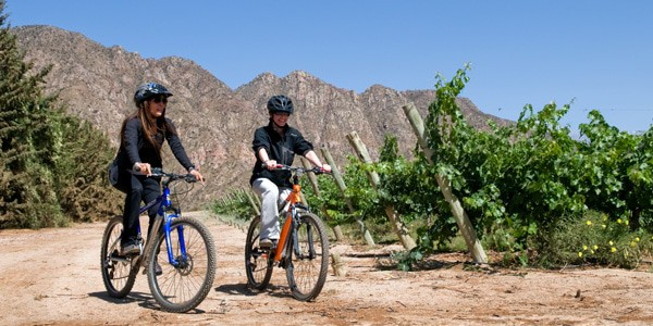 Bike Tour Of The Wineries