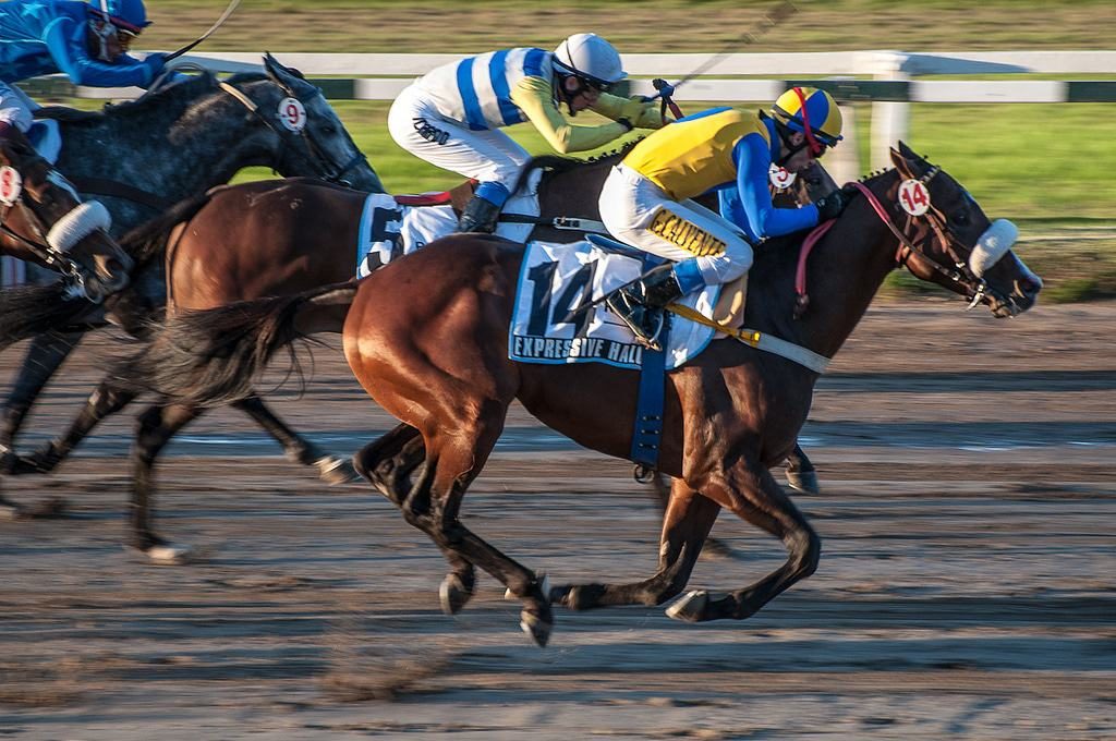 Horse Racing In Palermo