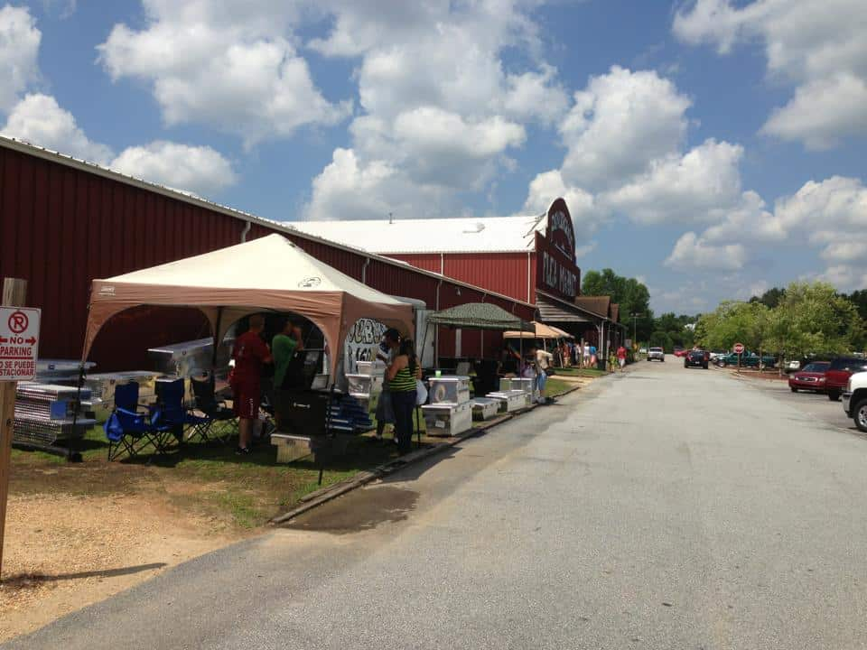 15 Best Flea Markets in Georgia - The Crazy Tourist