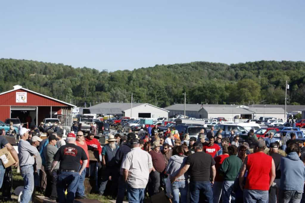 Rogers Flea Market & Auctions