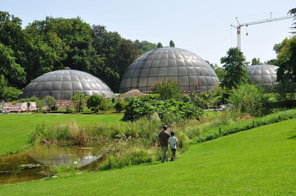 University Of Zürich Botanical Garden