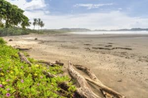 Playa Guiones in Nosara, Costa Rica