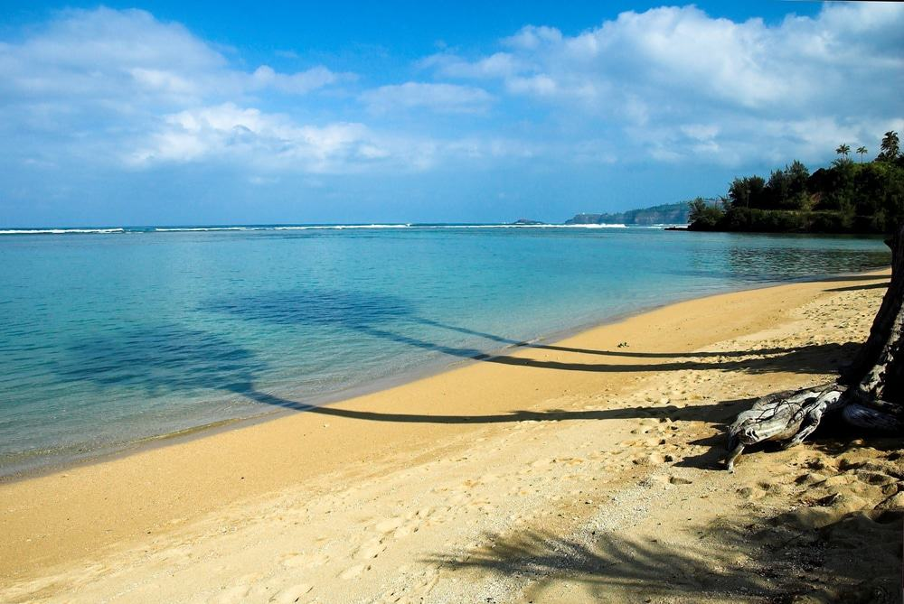 15 Best Beaches in Kauai - The Crazy Tourist