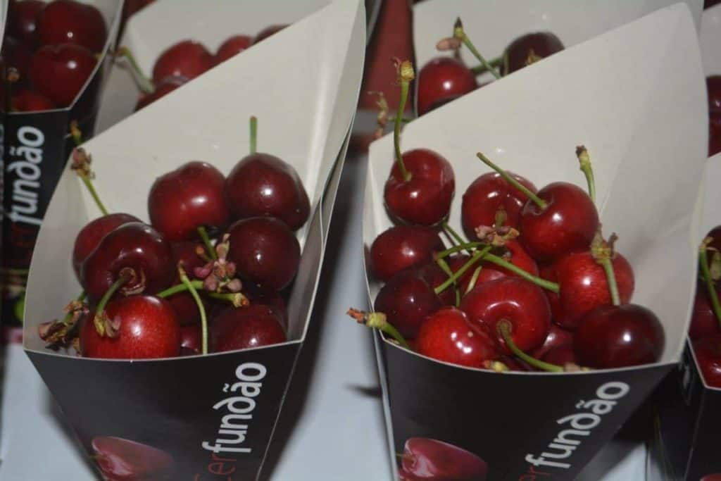 Fundão Cherries