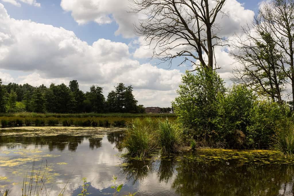 Maas-Schwalm-Nette Nature Park