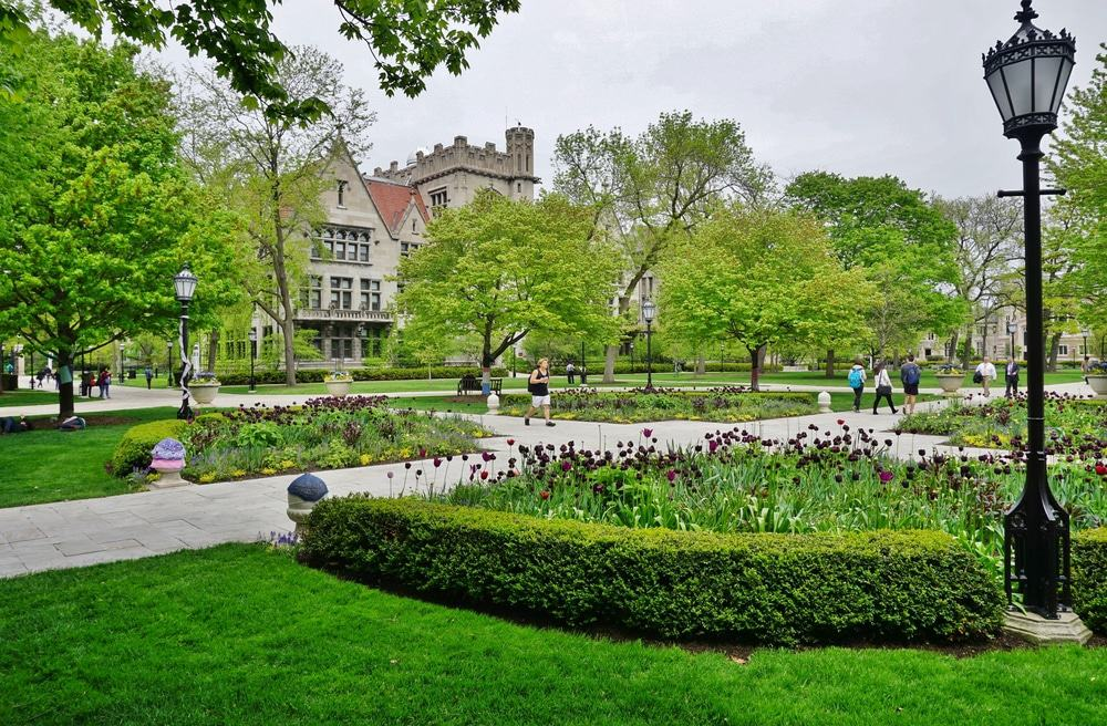 Campus of the University of Chicago, Hyde Park