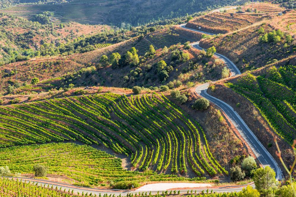 Priorat Region