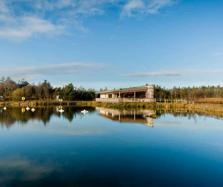 Lough Boora Discovery Park