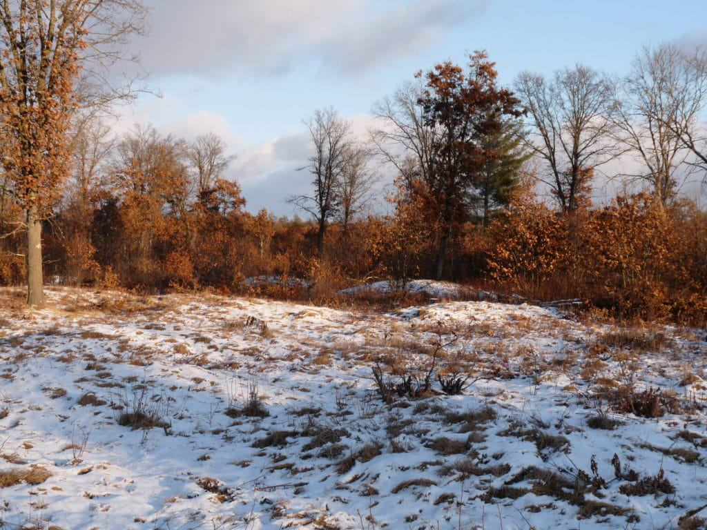 Indian Mounds, Wisconsin
