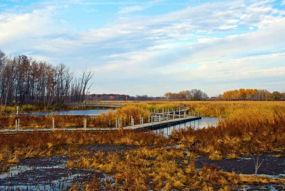 Horicon Marsh, Wisconsin