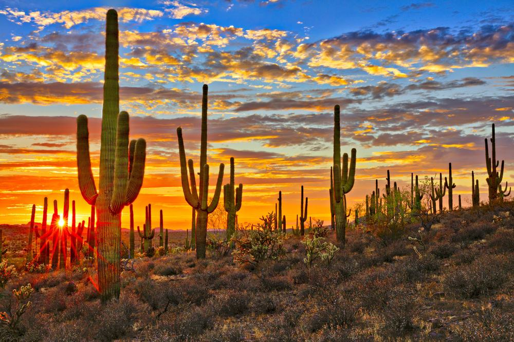 17 Most Beautiful Places to Visit in Arizona - Page 14 of 17 - The