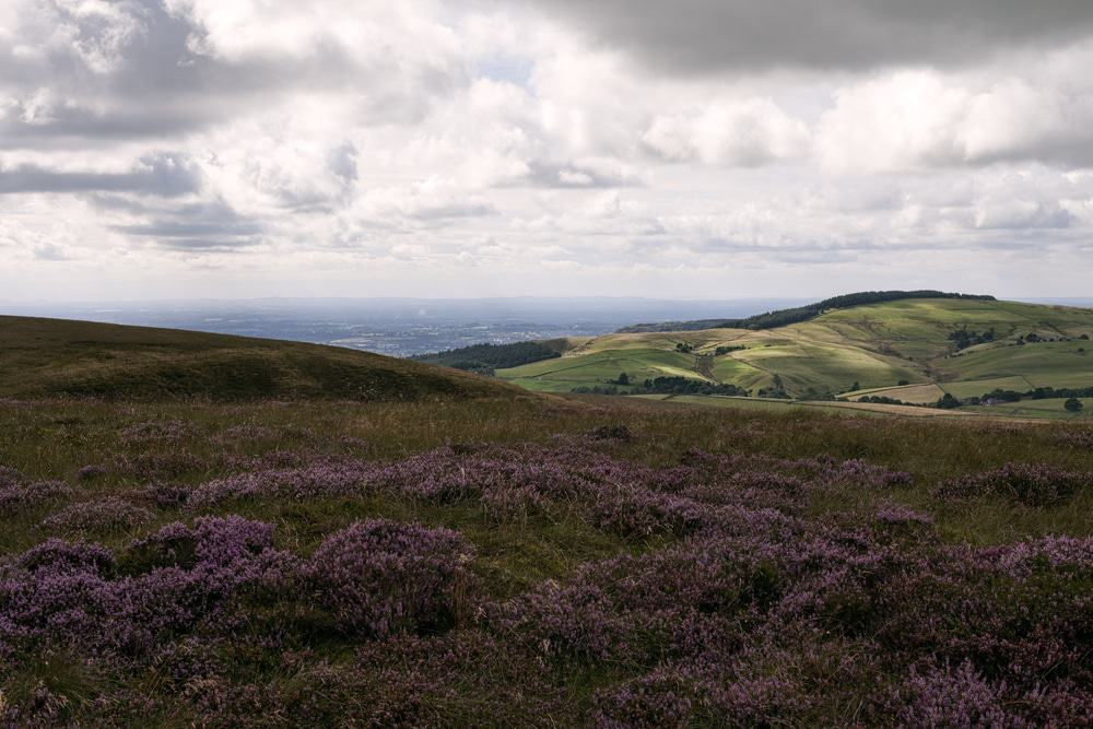 Axe Edge Moor