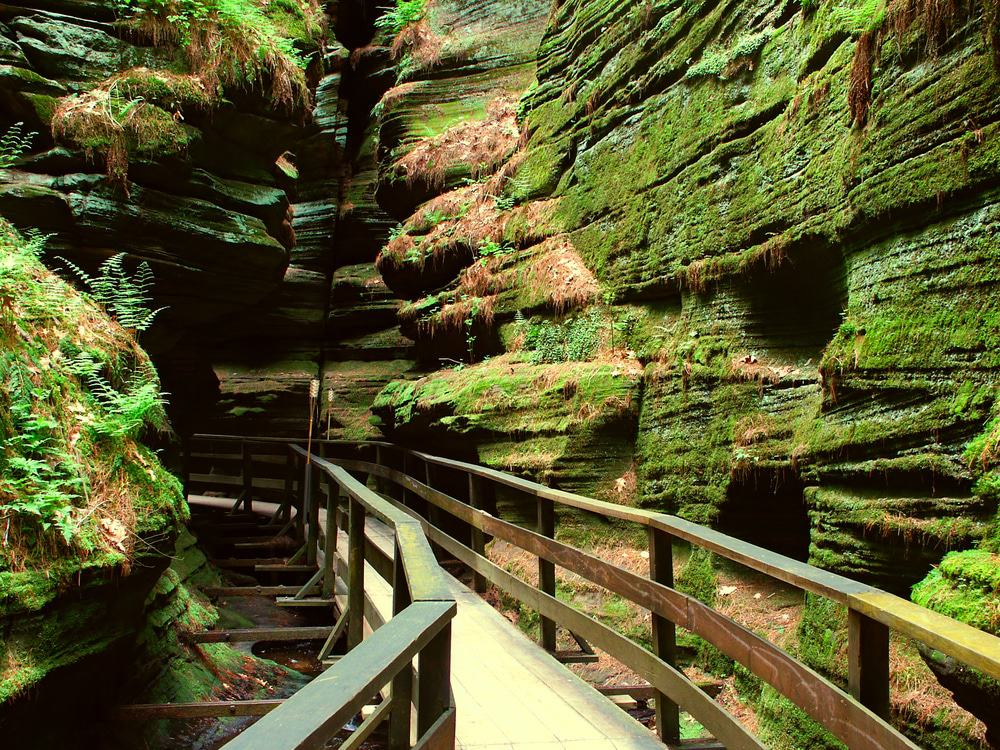 Canyon Path, Wisconsin Dells