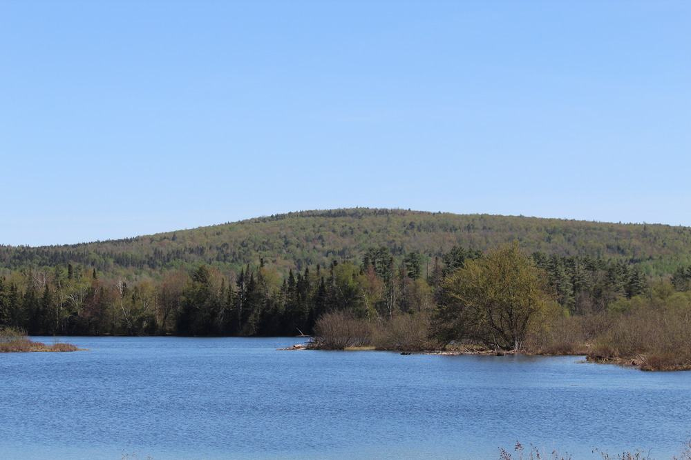 Great North Woods, New Hampshire