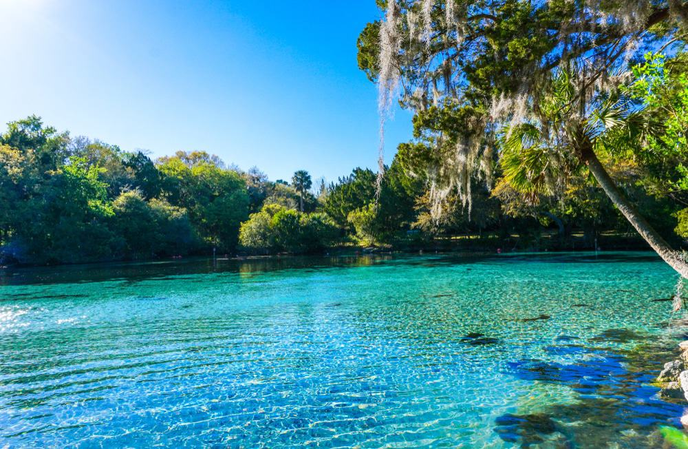 Silver Glen Springs Recreation Area, Ocala