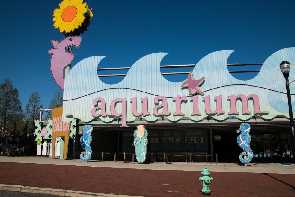 25 Best Things to Do in New Jersey - The Crazy Tourist
