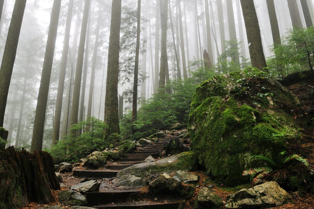 Grouse Grind, Vancouver Canada