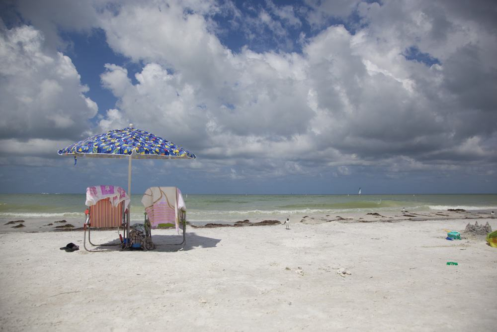 Honeymoon Island State Park, Dunedin
