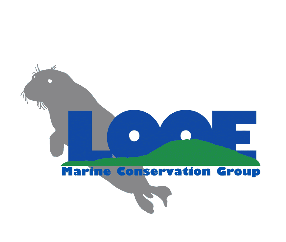 The Looe Marine Conservation Group