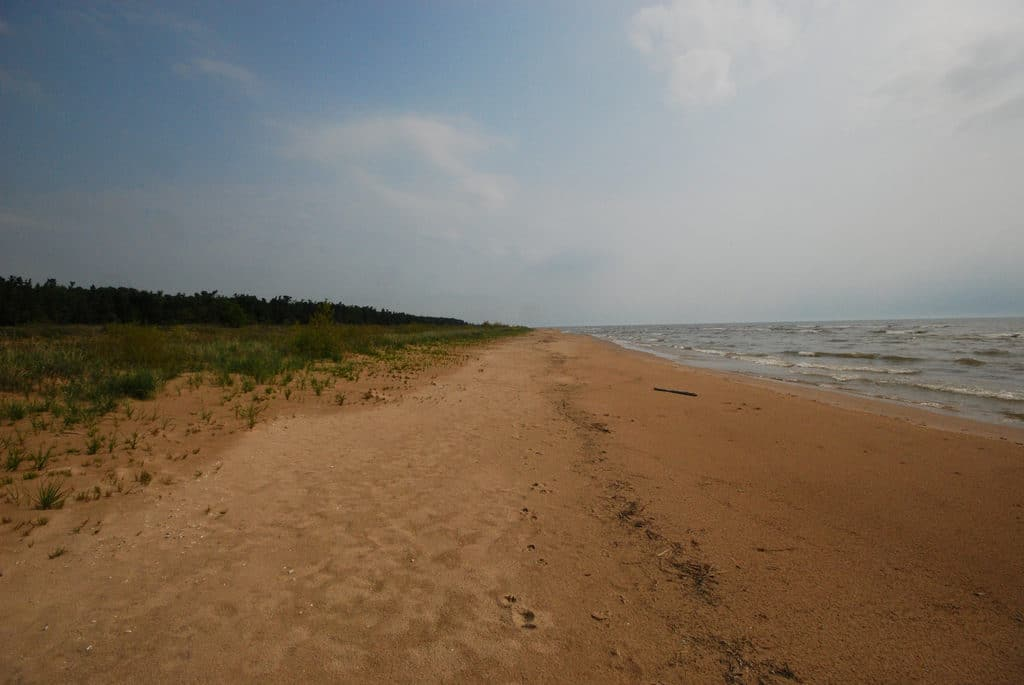 Point Beach State Forest, Wisconsin