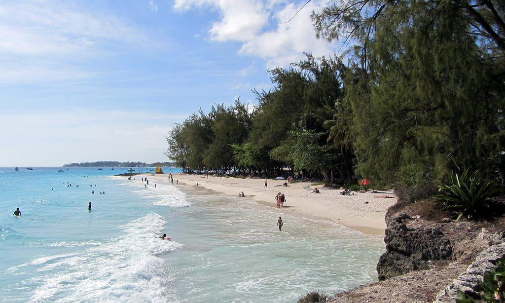 15 Best Beaches in Barbados - The Crazy Tourist