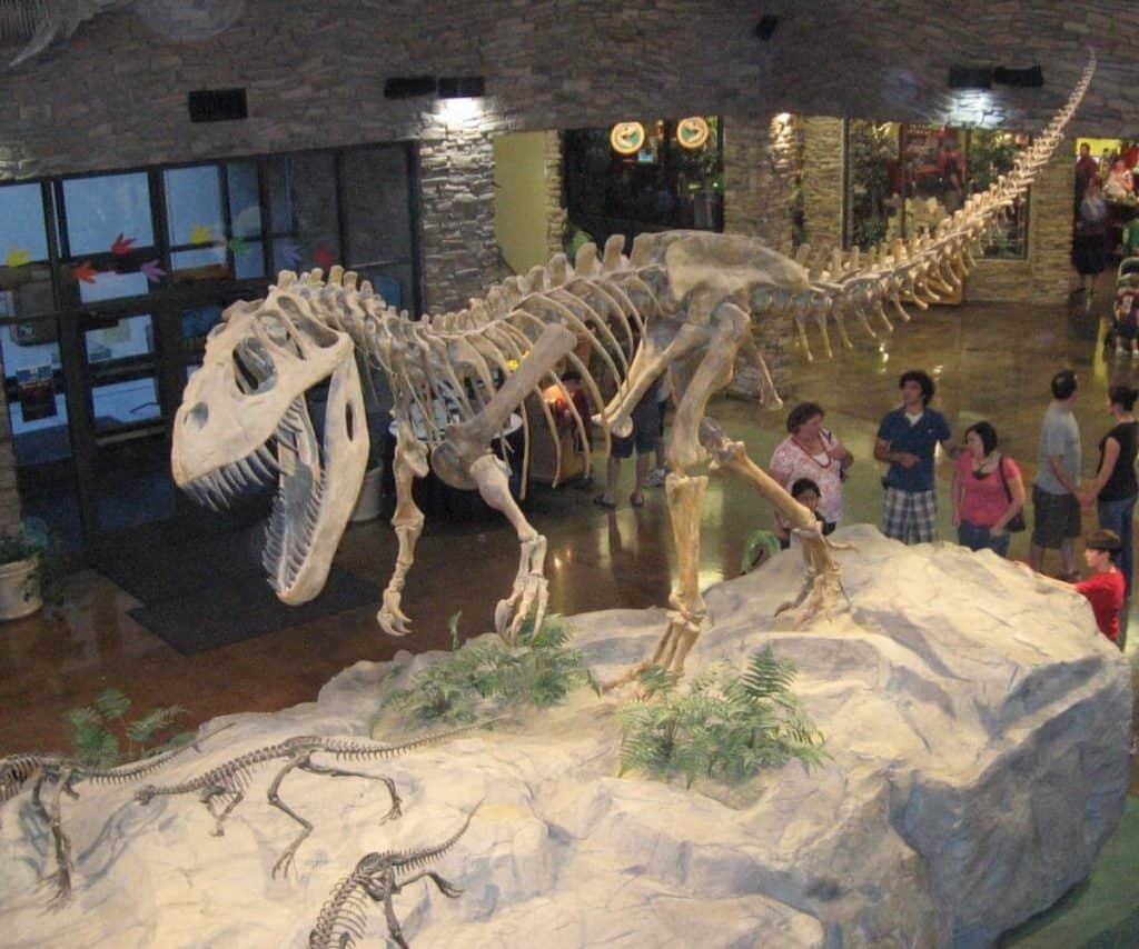 Museum of Ancient Life, Lehi