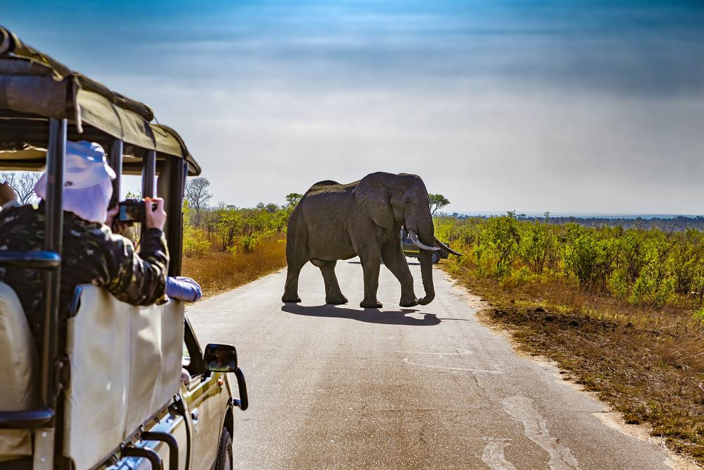 15 Best Day Trips from Johannesburg - The Crazy Tourist