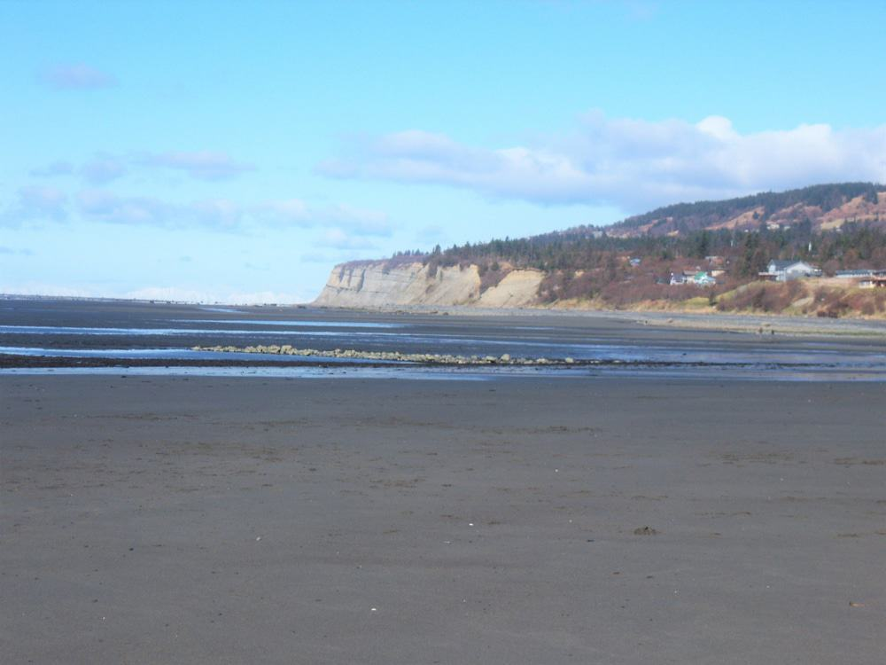 Bishop's Beach, Homer