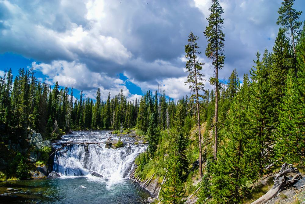 Moose Falls, Yellowstone