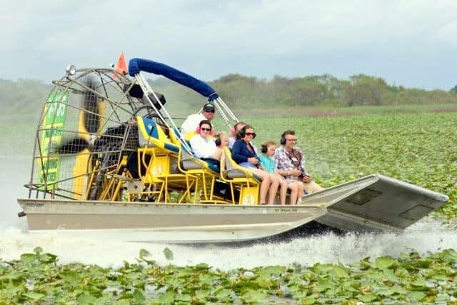 15 Best Orlando Airboat Tours The Crazy Tourist