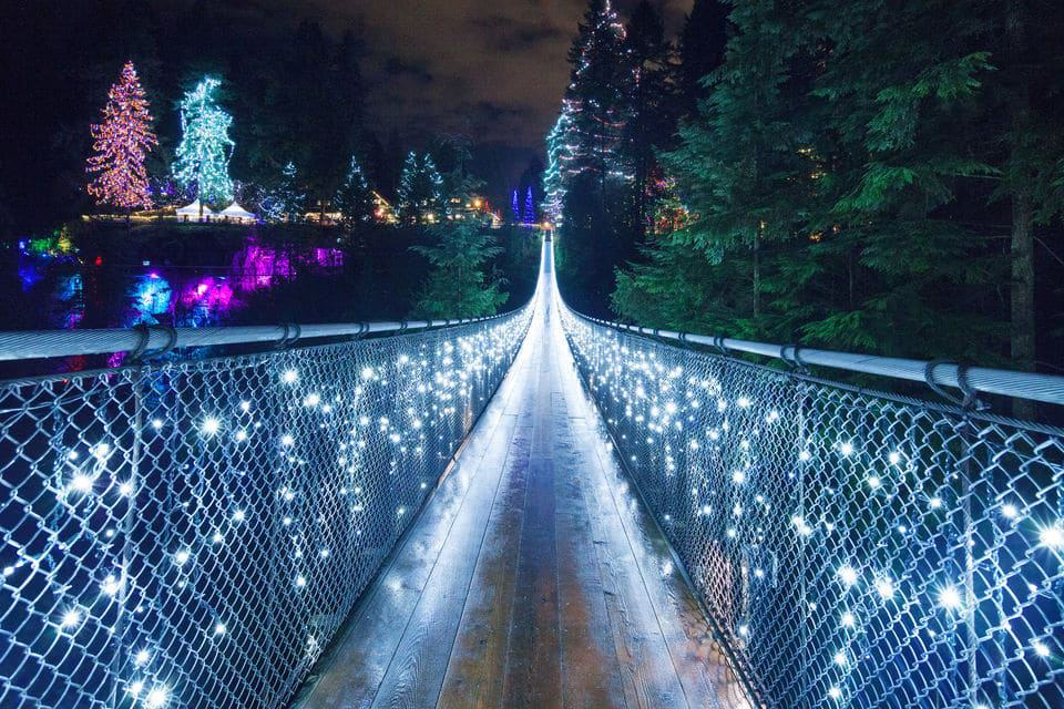Vancouver and Capilano Suspension Bridge Canyon Lights
