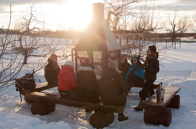 Ice Wine Tour From Montreal