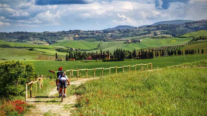 VIP Small-Group SuperTuscan Wine Tour